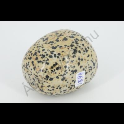 Dalmata jáspis extra egyedi marokkő 4680